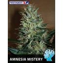 Amnesia Mistery Feminizada